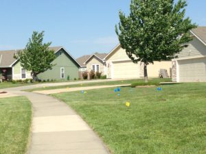Picture of lawn with utility flags marking buried utilities
